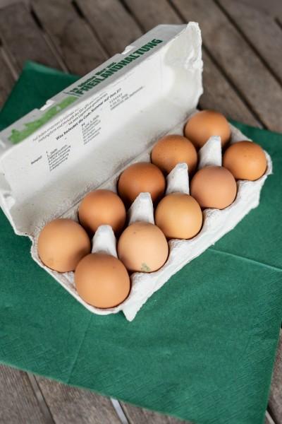 Eier, Freilandhaltung, Gr.L, 10 St.