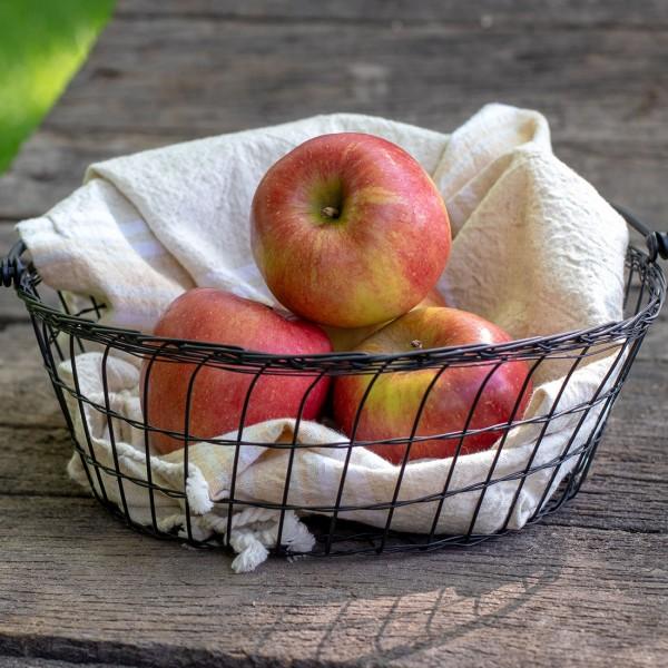Äpfel Holsteiner Cox
