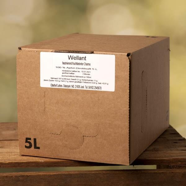 Sortenreiner Apfelsaft Wellant 5l