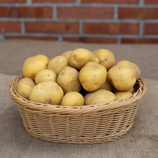 Kartoffel Mia