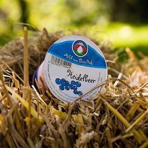 Diers Joghurt Heidelbeer