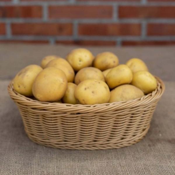 Kartoffeln Anuschka