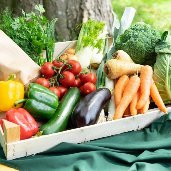Gemüsekiste für 2 Personen