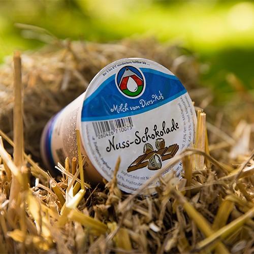 Diers Joghurt Nuss-Schoko