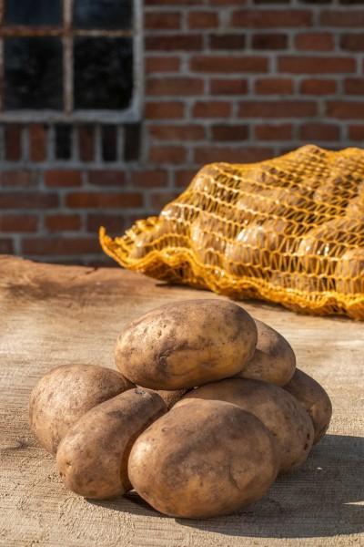 Kartoffeln Glorietta festkochend gelb