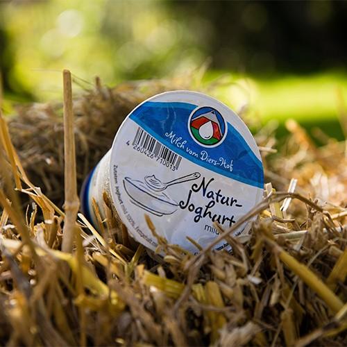 Diers Joghurt Natur