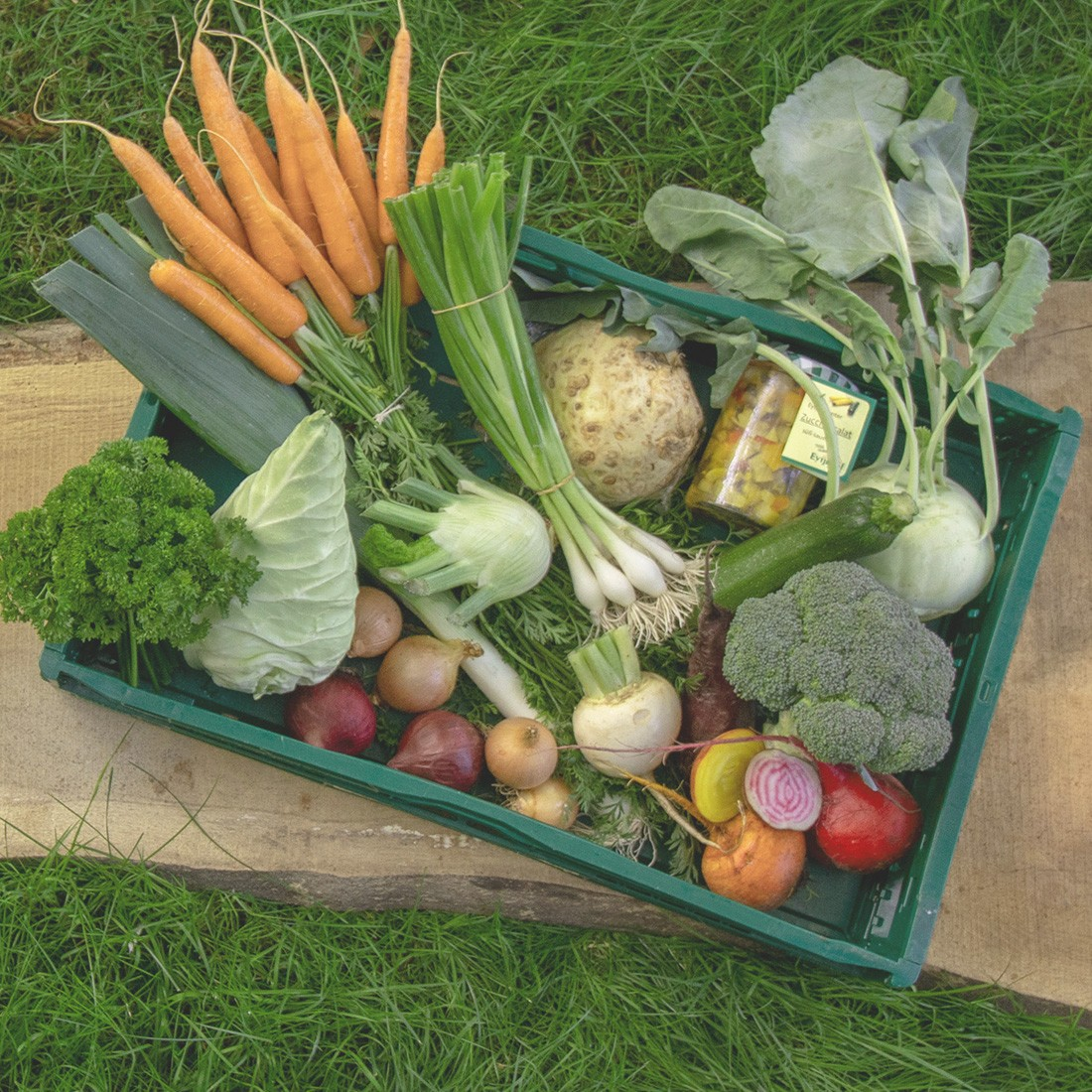 Vielfältige Gemüsekiste vom Eytjehof