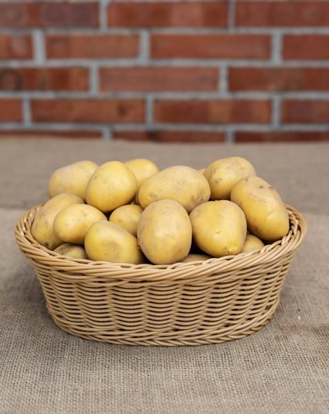 Kartoffel - Sorte Alexandra ( festkochend)