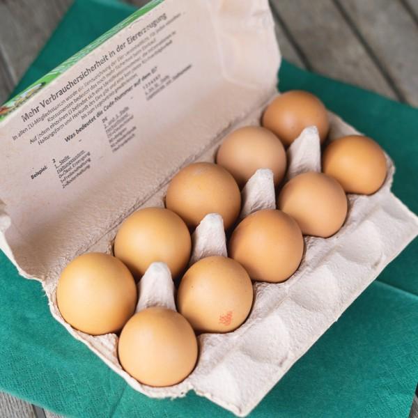 Eier von eigenen Hühnern (Bodenhaltung)