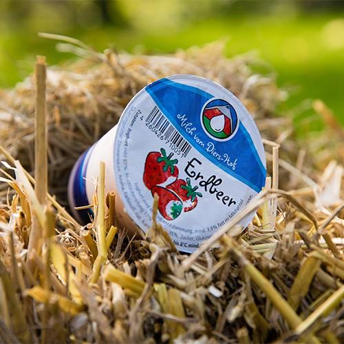 Diers Joghurt Erdbeere